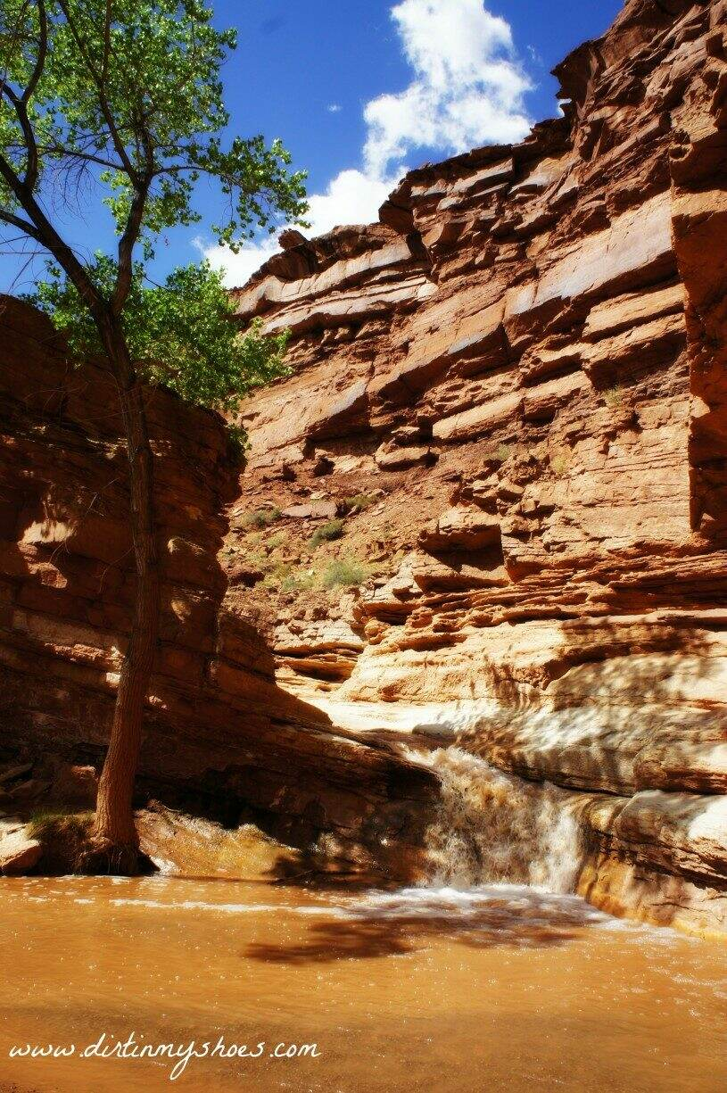Secret Hike in Capitol Reef National Park