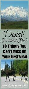 Don't miss these 10 things on your first visit to Denali National Park. This park is phenomenal! Tips written by a former park ranger!