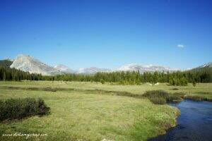 Tuolumne Meadows || Yosemite National Park || Dirt In My Shoes