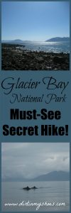 Enjoy this secret hike out to Point Gustavus in Glacier Bay National Park! This park is a gorgeous stop on your unforgettable Alaska vacation!