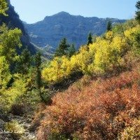 The Best of Utah! Fall Colors Along the Scenic Alpine Loop