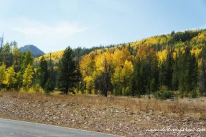 Fall Colors || Mirror Lake Highway, UT || Dirt In My Shoes
