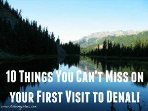 Denali National Park || Dirt In my Shoes