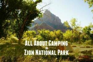 All About Camping || Zion National Park || Dirt In My Shoes