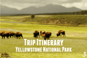 Trip Itinerary || Yellowstone National Park || Dirt In My Shoes