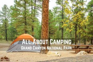 All About Camping in Grand Canyon National Park || Dirt In My Shoes