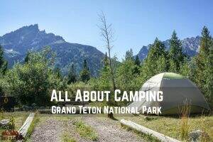 All About Camping in Grand Teton National Park || Dirt In My Shoes