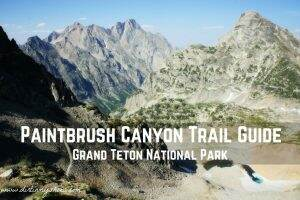 Paintbrush Canyon Trail Guide || Grand Teton National Park || Dirt In My Shoes