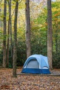Cataloochee Campground || Great Smoky Mountains National Park || Dirt In My Shoes
