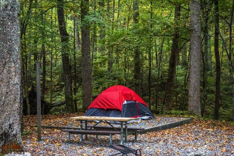 All About Camping in Great Smoky Mountains National Park