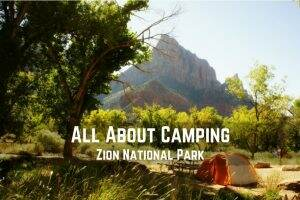 All About Camping in Zion National Park || Dirt In My Shoes