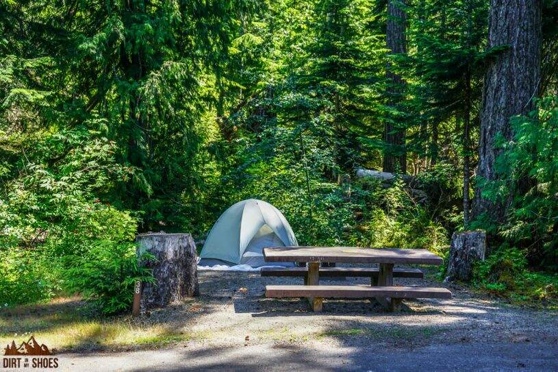 All About Camping in Olympic National Park